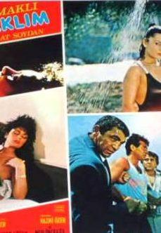 Uçurumdaki Kadın 1979 Zerrin Egeliler Filmi İzle reklamsız izle
